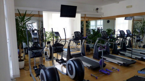 Fitness Vilová